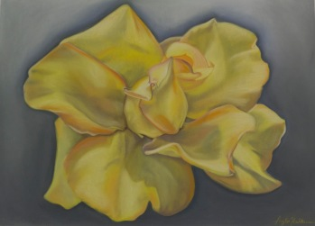 """Grandiflora"", soft pastel on heavy weight sanded paper, 22"" x 36"""