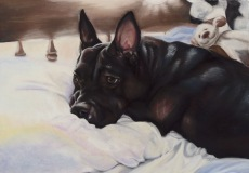 """""""Belle"""", soft pastel on heavy weight sanded paper, 22"""" x 36"""""""