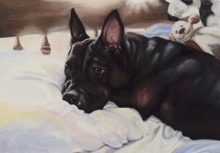 """Belle"", soft pastel on heavy weight sanded paper, 22"" x 36"""