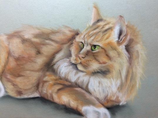 """Charlie Cat"", soft pastel sketch on paper, 12"" x 16"""