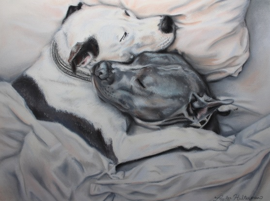 """Pitbull Love"", soft pastel on paper, 12"" x 16"""