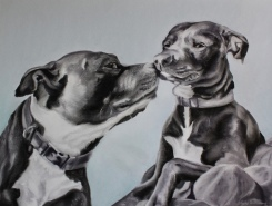 """Morning Kisses - Charlie & Belle"", soft pastel on paper, 19.5"" x 25.5"""